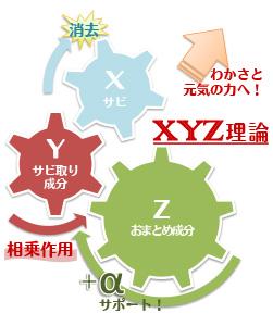 XYZ理論