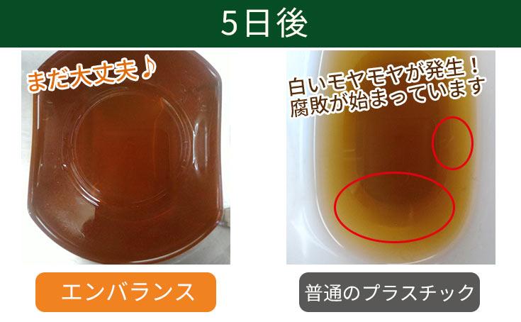 麦茶の保存実験